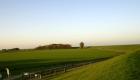 Grüne Wiesen und nahezu unendliche Deichwege in Friesland